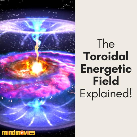 Toroidal Energetic Field? What Tha?!