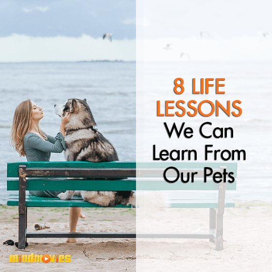 8 Life Lessons We Can Learn From Our Pets