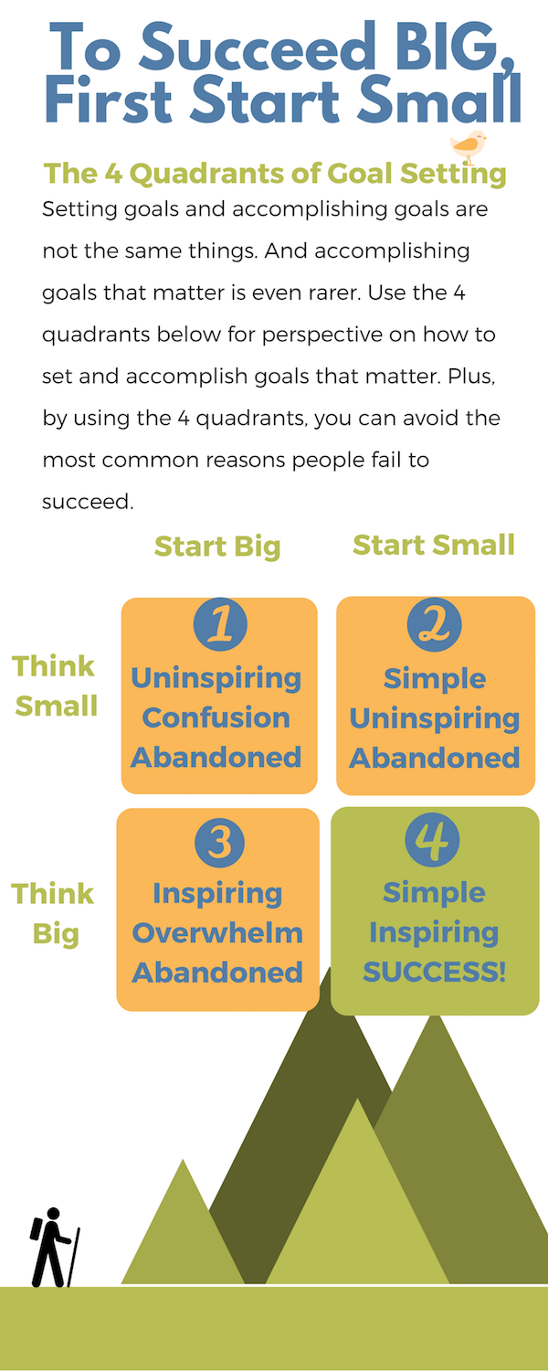 The Think Small Think Big Infographic