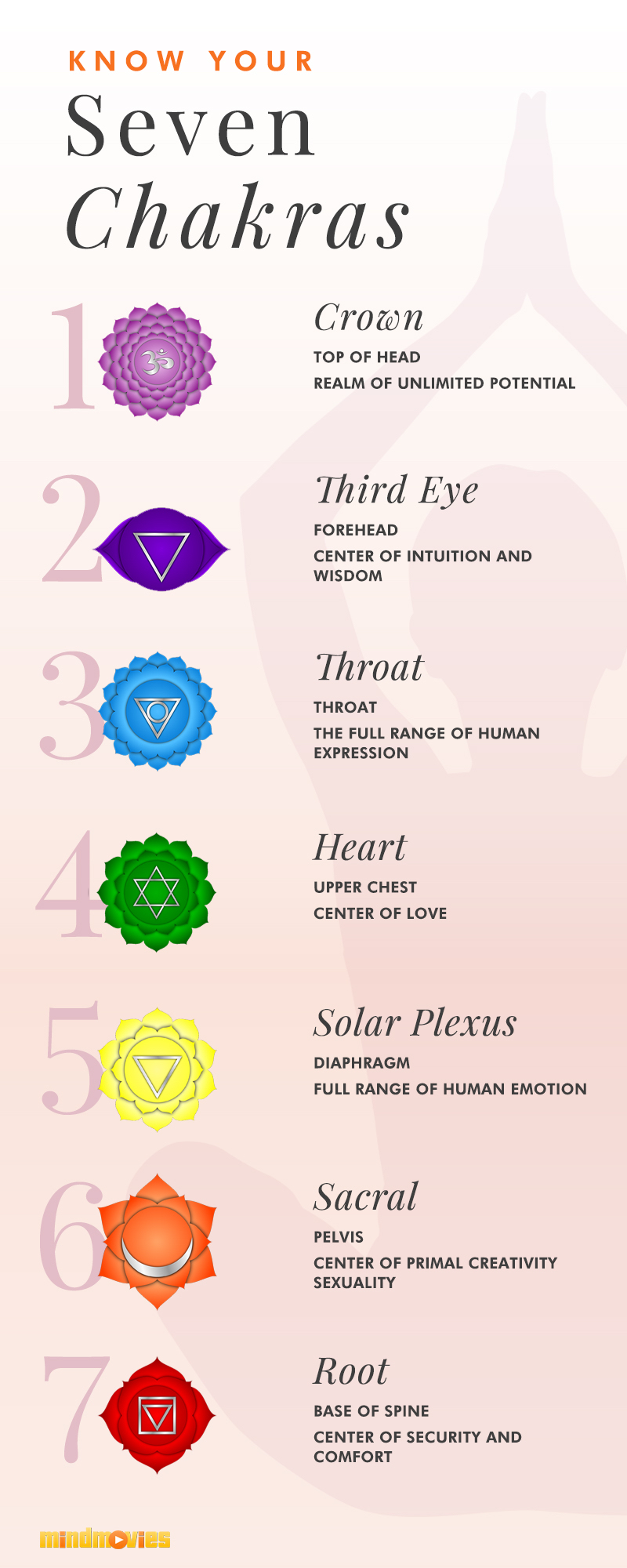 Infographic of chakra chart