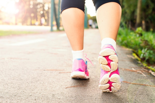 Walking Legs