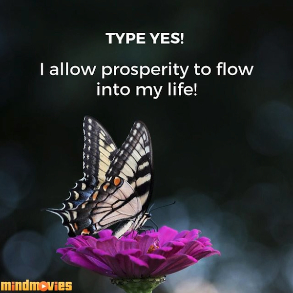 I allow prosperity to flow into my life