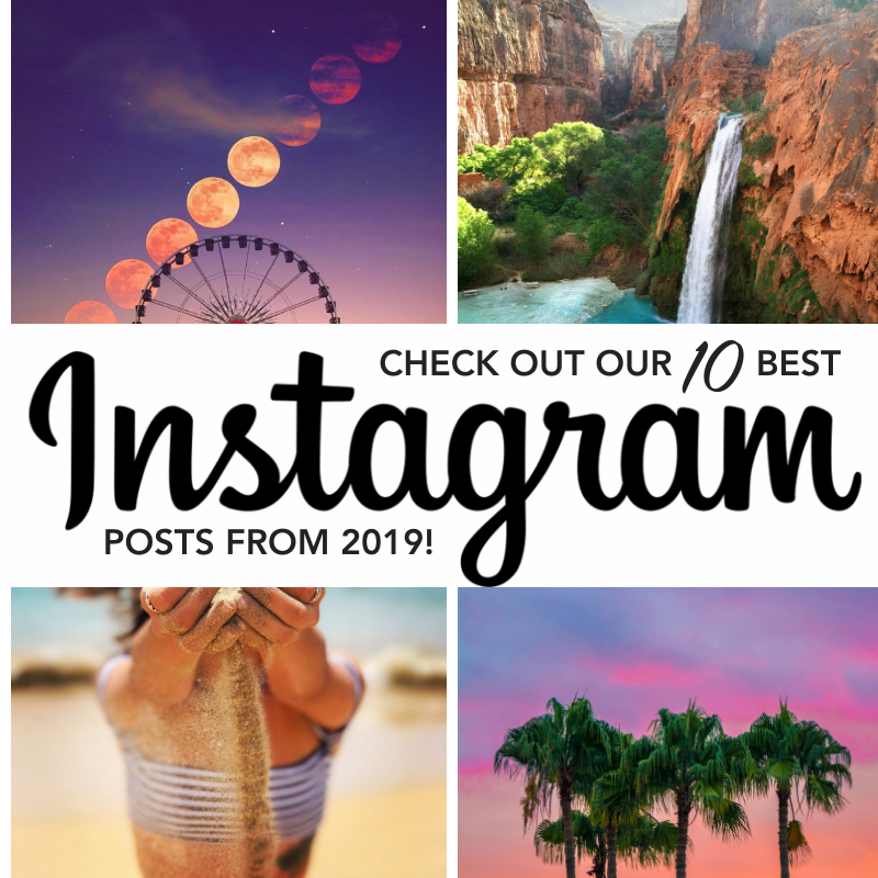 Our Top 10 Instagram Posts of 2019!