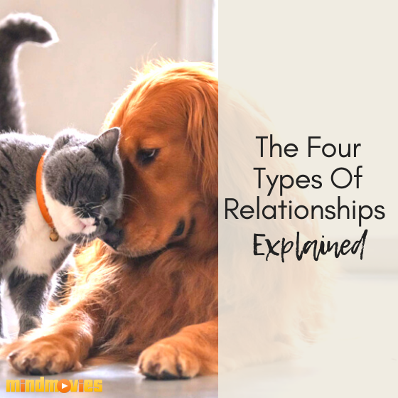 The Four Types of Relationships Explained