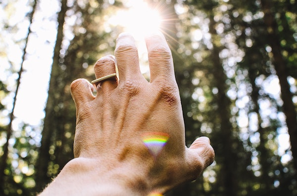 Hand Reaching Toward the Sun in a Forest