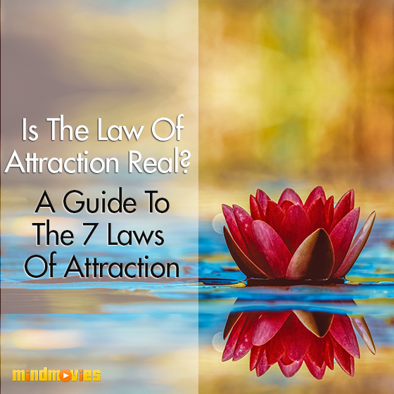 Is The Law Of Attraction Real? A Guide To The 7 Laws Of Attraction