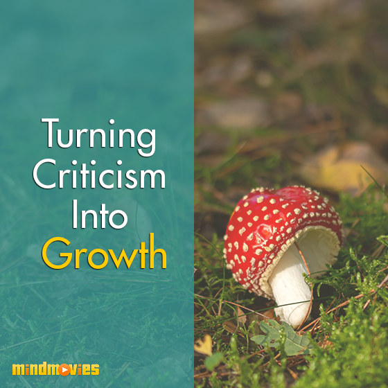 Turning Criticism Into Growth