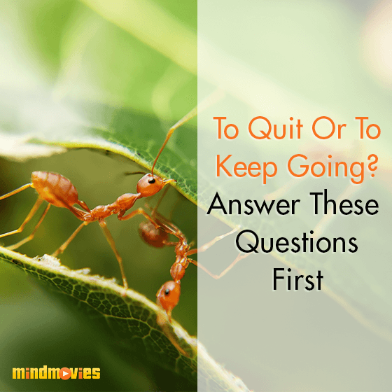 To Quit Or To Keep Going? Answer These Questions First