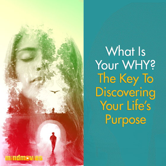 What Is Your WHY? The Key To Discovering Your Life's Purpose