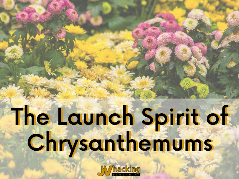 The Launch Spirit of Chrysanthemums
